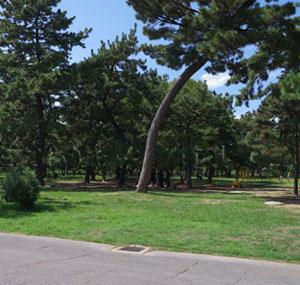 大阪の無料でBBQができる公園「浜寺公園」
